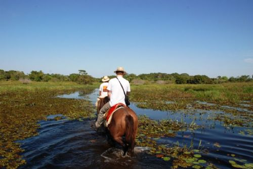 Pantanal Northern Horseback Ride