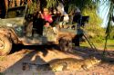Pantanal & Bonito Budget Tour (SC) - 06 nights / 07 days Jeep Safari Tour