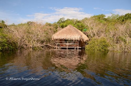 Juma Amazon Jungle Lodge
